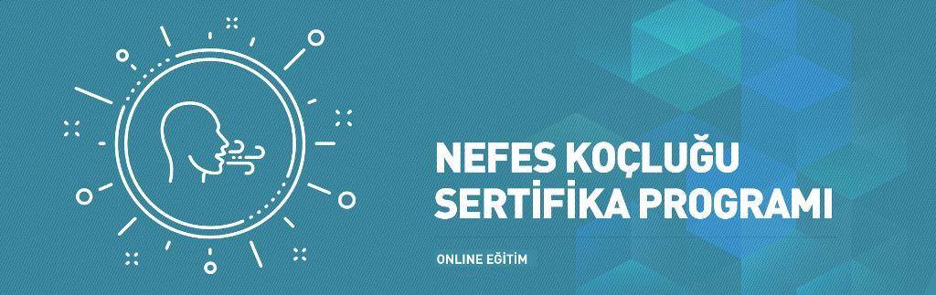NEFES-19X6